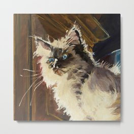 The Magnificent Ascent of the Mighty Bear Detail (Ragdoll Kitten) Metal Print