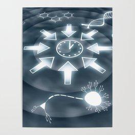Convergent Evolution Poster