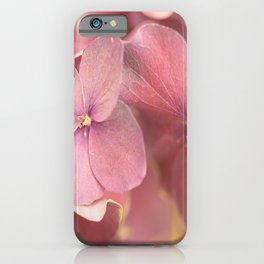 Hortensia Flower Pink Hydrangea #decor #society6 #buyart iPhone Case