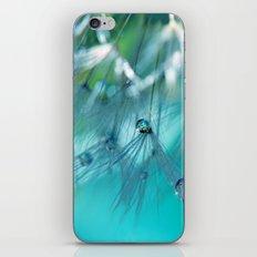 Turquoise Dandelion Macro iPhone & iPod Skin