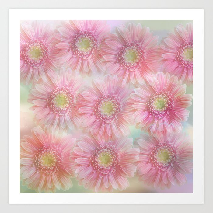 Pink daisies on a pastel background. Art Print