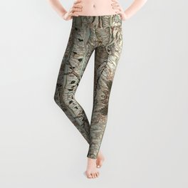 Pause and Reflect III Leggings