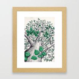 Big tree in white Framed Art Print