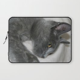 Close Up Portrait Of A Relaxed Grey Cat  Laptop Sleeve