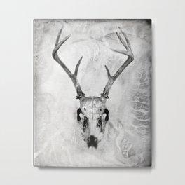 Whitetail Deer Skull (Buck) - 8x10 Tintype Photo Metal Print