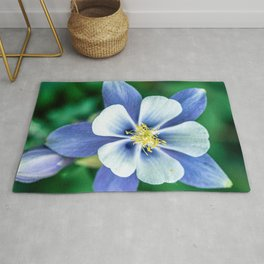 Colorado Columbine // States Flower Close up Purplish Blue Petals White and Yellow Accents Rug