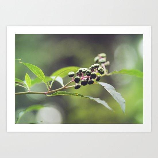 Natural Design I Art Print