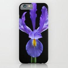 Blue Iris Flower iPhone 6s Slim Case
