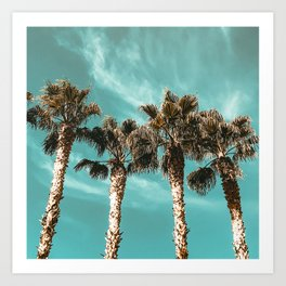 Tropical Palm Tree Photography {1 of 2} | Teal Blue Sky Wind Blown Clouds Art Print