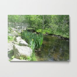 SPRING GROWTH ON A STREAM Metal Print
