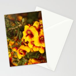 Parrot Pea Stationery Cards