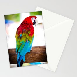 Macaw Parrot Stationery Cards
