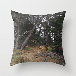 Lobos Deer Throw Pillow