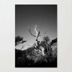 The Ascent.  Canvas Print