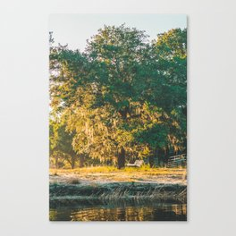 Sunrise by the River Canvas Print