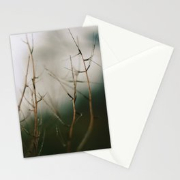 Dull Winter Stationery Cards