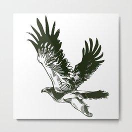 Eastern imperial eagle (Aquila heliaca) Metal Print