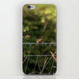 Wren Songbird Bird on a Wire (Troglodytes) iPhone Skin