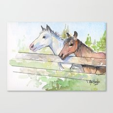 Horses Watercolor Sketch Barn Animals Horse Canvas Print