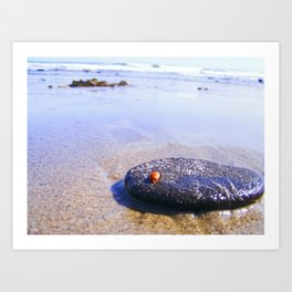 Lady Bug On Vacation Art Print