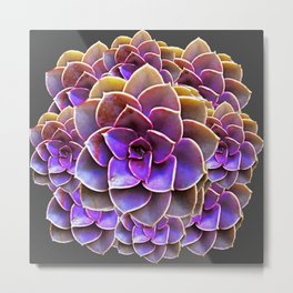 PURPLE-CREAM SUCCULENT ROSETTES Metal Print