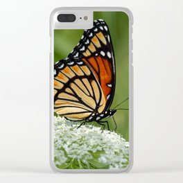 Viceroy Butterfly on Queen Anne's Lace Clear iPhone Case