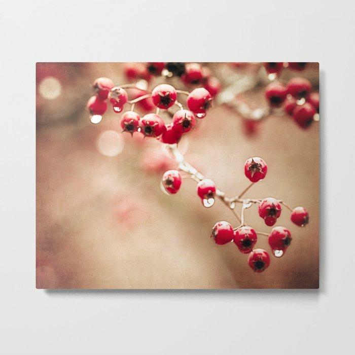 crabapples and raindrops Metal Print