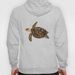 Hawksbill sea turtle (Eretmochelys imbricata) Hoody