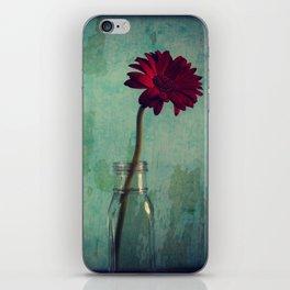 Red Velvet iPhone Skin