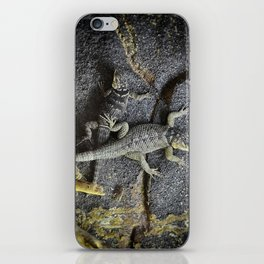 Desert lizards.... iPhone Skin