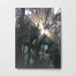 Waimangu Volcanic Valley, Rotorua, New Zealand Metal Print