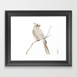 Winter Bird, collage Framed Art Print