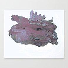 Camellia side Canvas Print