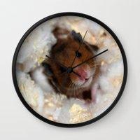 hamster Wall Clocks featuring Sleepy Hamster  by Arianne Kenworthy Photography
