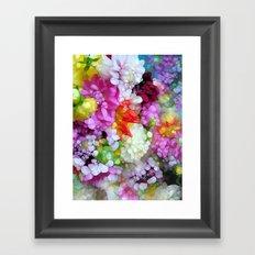Dazzling Dahlia's Framed Art Print