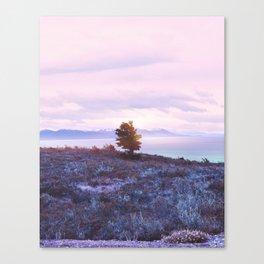 Pastel vibes 76 Canvas Print