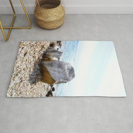 A Rock's Perspective Rug