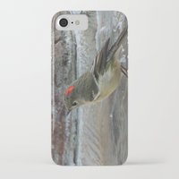wallet iPhone & iPod Cases featuring Ruby-Crowned Kinglet At The Fountain by Ralph S. Carlson