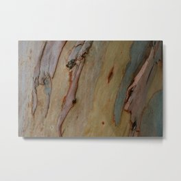 Eucalyptus tree bark Metal Print