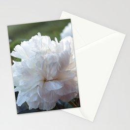 Peonia Blanco Stationery Cards