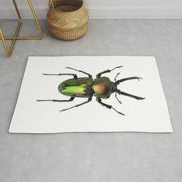 Rainbow Stag Beetle Rug
