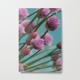 Pink Onion Flower Metal Print