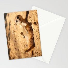 Meerkat Suricat suricatta Sunbathing #decor #society6 #buyart Stationery Cards