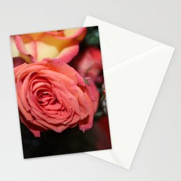 Rose 2 Stationery Cards