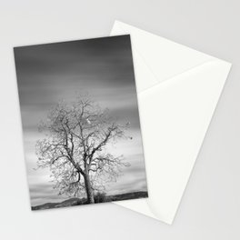 Lonely tree. Road to the mountains Stationery Cards