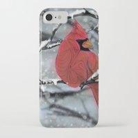 cardinal iPhone & iPod Cases featuring Cardinal by Ben Geiger
