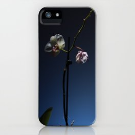 Orchid on Blue Background iPhone Case
