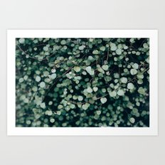Gentle Green Art Print