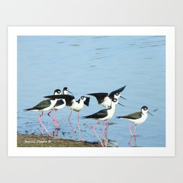 Hanging With Friends Art Print