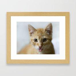 xghj Framed Art Print